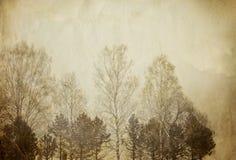 Bäume auf Weinlesepapierblatt. Lizenzfreies Stockfoto