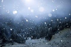 Bäume bedeckt mit Reif und Schnee in den Winterbergen - Chri stockfotografie
