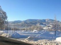 Bäume bedeckt mit Schnee auf einem Winterberg Winter in den Bergen Stockbild