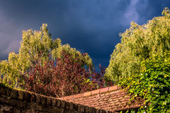 Bäume, Dachspitzen und stürmischer Himmel Lizenzfreie Stockbilder