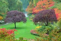 Bäume in den Butchart Gärten Lizenzfreie Stockfotos