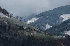 Bäume in der Wolke Stockbild