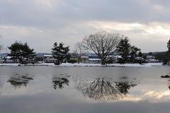 Bäume, die in einem Teich vor Dämmerung im Winter sich reflektieren Lizenzfreie Stockbilder