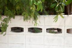 Bäume, die einen weißen konkreten Zaun an einem sonnigen Tag überhängen Stockbild