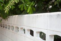 Bäume, die einen weißen konkreten Zaun an einem sonnigen Tag überhängen Lizenzfreies Stockfoto