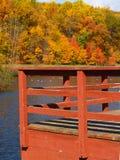 Bäume, die Farben in einem Park ändern Lizenzfreie Stockfotos