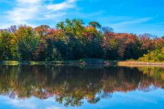 Bäume, die Farben im Fall drehen lizenzfreies stockbild
