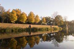 Bäume, die im Wasser sich reflektieren stockbild