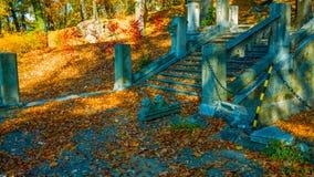 Bäume, die noch mit etwas goldenen Farben grün bleiben Autumn Landscape Treppenhaus auf und ab im Herbstpark Bunte Blätter Schöne lizenzfreies stockfoto