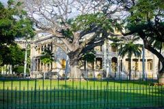 Bäume, die Palast, Honolulu, Hawaii umgeben Stockbild