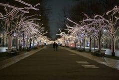 Bäume in die Stadt verziert mit Leuchten Lizenzfreie Stockfotografie