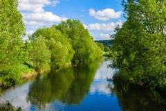 Bäume durch den Fluss Stockbild