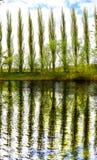 Bäume durch den Fluss stockfotografie