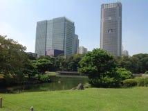 Bäume in einem grünen Park in Tokyo Stockfoto