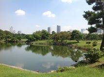 Bäume in einem grünen Park in Tokyo Lizenzfreie Stockfotografie