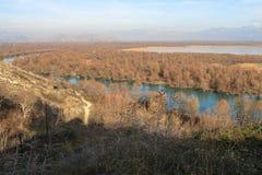 Bäume in einem klaren Fluss Lizenzfreie Stockfotos