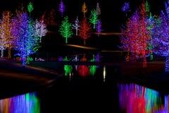 Bäume eingewickelt in LED-Lichtern für Weihnachten Stockbilder