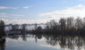 Bäume entlang dem Fluss Stockfoto