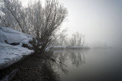 Bank des Flusses in einem Nebel lizenzfreie stockbilder