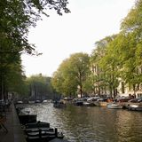 Bäume entlang dem Kanal lizenzfreies stockbild