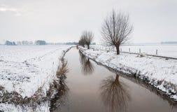 Bäume entlang einem Abzugsgraben in einer schneebedeckten ländlichen Landschaft Lizenzfreie Stockbilder