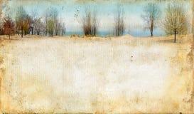 Bäume entlang einem See auf Grunge Hintergrund lizenzfreie stockbilder