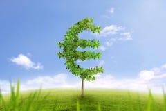 Bäume in Form des Eurozeichengeschäftskonzeptes des wachsenden Wohlstandes Stockfotos