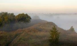Bäume im dichten Nebel Lizenzfreies Stockfoto