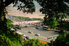 Bäume im Frühjahr in Stadt Chinas Chongqing stockfotos