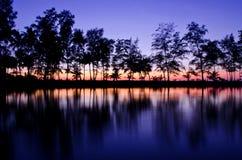 Bäume im Sonnenuntergang stockbilder