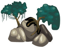 Bäume mit Felsen Lizenzfreies Stockbild