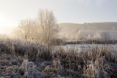 Bäume mit Reif auf einem eiskalten Wintermorgen Stockfotografie