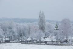 Bäume mit Schnee im Winterpark Stockbild