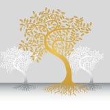 Bäume mit Wurzeln Stockbild