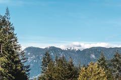 Bäume nähern sich Steinbruch-Felsen in Nord-Vancouver BC Kanada Stockbild