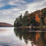 Bäume reflektiert in einem See Lizenzfreies Stockbild