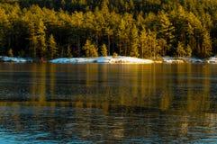 Bäume reflektiert im Eis auf Pharoah See, Adirondack Forest Pr Lizenzfreies Stockfoto