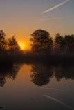 Bäume reflektiert im Wasser bei Sonnenaufgang Stockfotografie