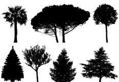 Bäume - Set Lizenzfreies Stockbild