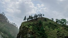 Bäume sind auf den Hügel lizenzfreies stockfoto