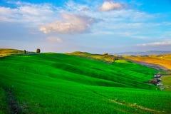 Bäume und Ackerland nahe Volterra, Rolling Hills auf Sonnenuntergang landwirtschaftlich Lizenzfreie Stockfotos