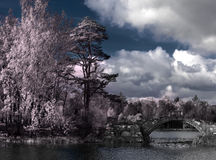 Bäume und die Brücke werden im Fluss, ein Infrarotfoto reflektiert Lizenzfreie Stockfotografie
