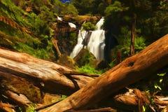 Bäume und Fälle Lizenzfreie Stockfotografie
