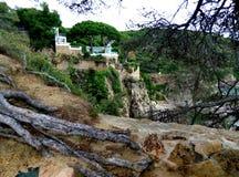 Bäume und Felsen Stockfotos