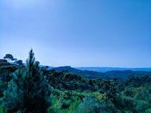 Bäume und Gebirgslandschaft stockbilder