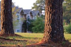 Bäume und Häuser Stockbilder