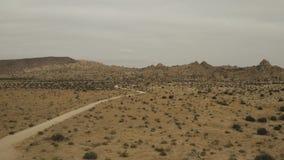 Bäume und Häuser einer Schmutzstraße in der Wüste stock footage