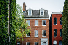 Bäume und historische Häuser fällt herein Punkt, Baltimore, Maryland Lizenzfreie Stockfotos