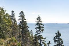 Bäume und Inseln auf Maine-Küste Lizenzfreie Stockfotografie