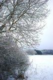 Bäume und Kampagne schneebedeckt in Auvergne stockfoto